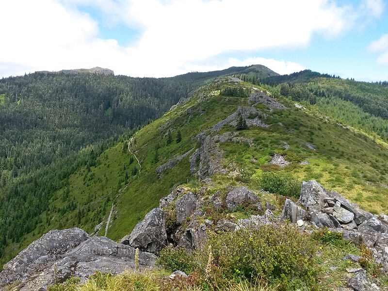 view to the northeast [Pyramid Rock, Gifford Pinchot National Forest, Washington]