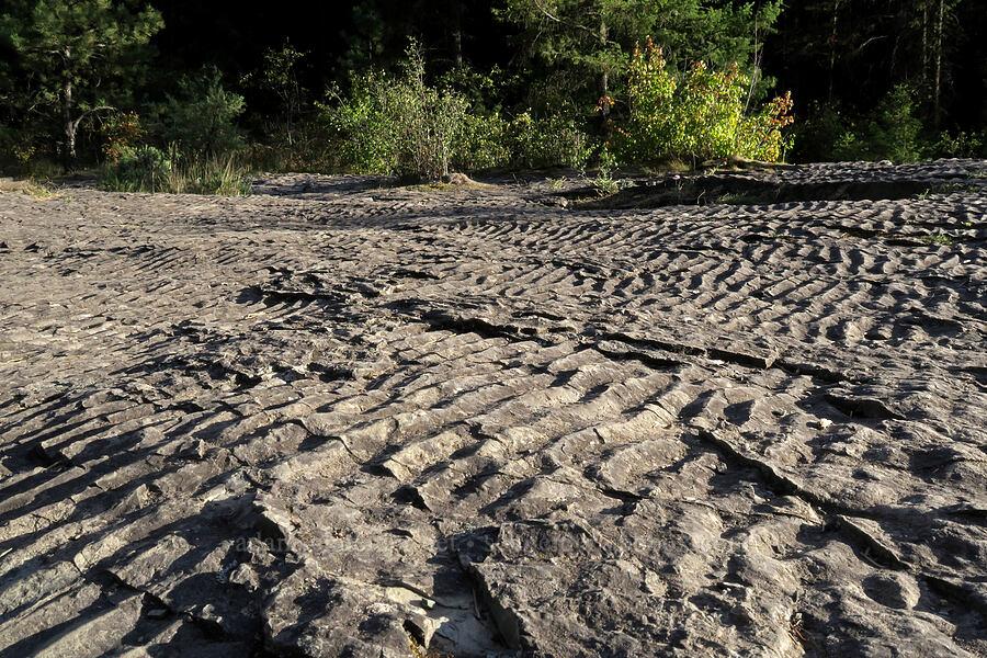 ripple marks on sedimentary rocks [Kootenai Falls, Lincoln County, Montana]