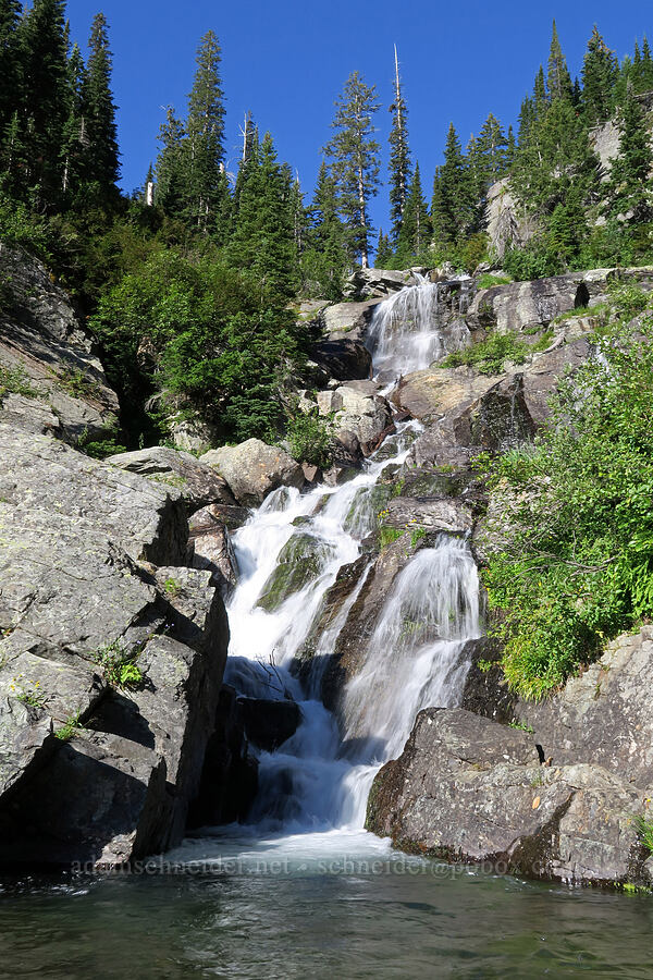 Leigh Creek Falls [Leigh Lake Trail, Cabinet Mountains Wilderness, Montana]