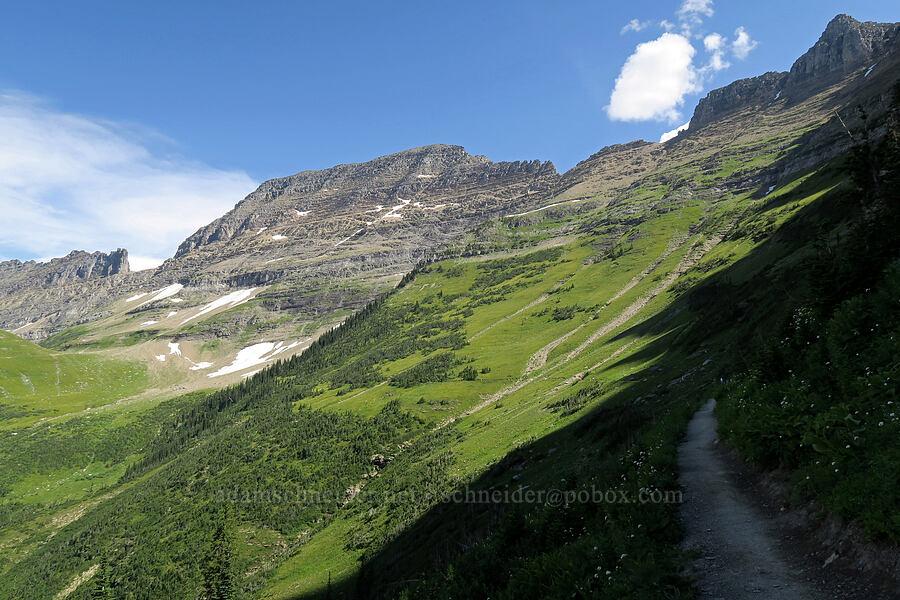Garden Wall [Highline Trail, Glacier National Park, Montana]