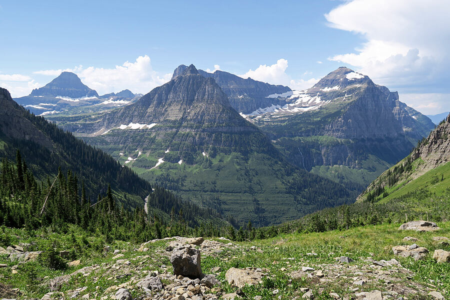 Reynolds Mountain, Clements Mountain, Mt. Oberlin, & Mt. Cannon [Highline Trail, Glacier National Park, Montana]