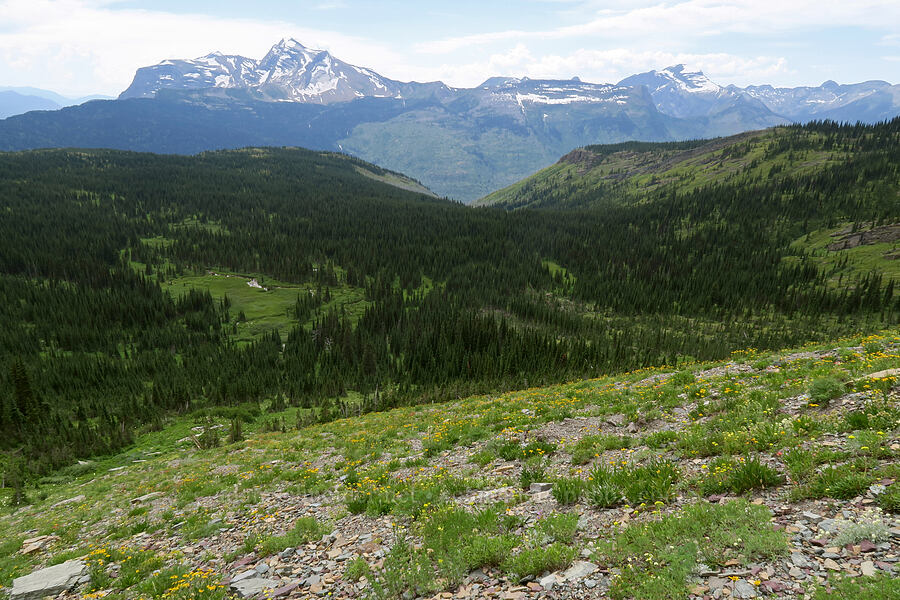 Granite Park & Heavens Peak [Highline Trail, Glacier National Park, Montana]