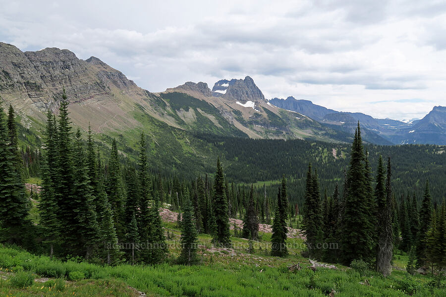 view to the southeast [Granite Park Trail, Glacier National Park, Montana]