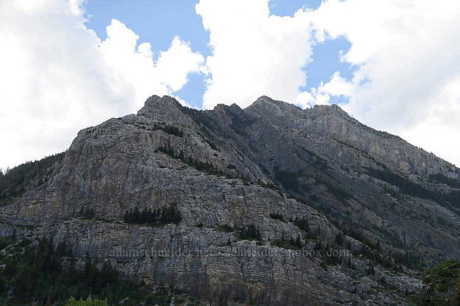 Mt. Crandell (Bear's Hump) [Waterton Townsite, Waterton Lakes National Park, Alberta, Canada]