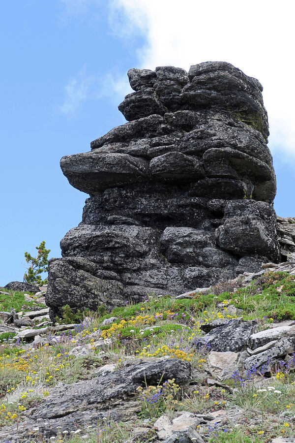 Easter Island-like rock formation [Lookout Mountain Trail, Badger Creek Wilderness, Oregon]