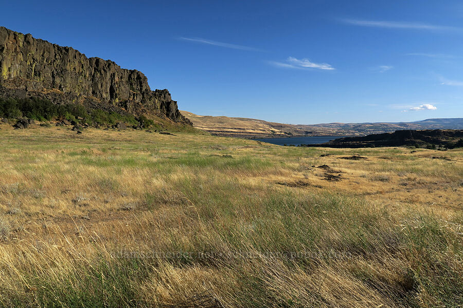 Horsethief Butte & grasslands [Horsethief Butte Trail, Columbia Hills State Park, Washington]