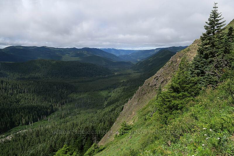 Muddy Fork's valley [Bald Mountain, Mt. Hood Wilderness, Oregon]