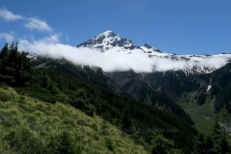 Mount Hood & clouds [Timberline Trail, Mt. Hood Wilderness, Oregon]