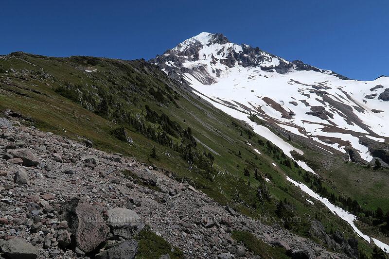 Mount Hood [McNeil Point, Mt. Hood Wilderness, Oregon]