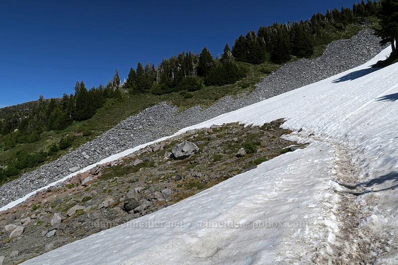 trail across snowfields [McNeil Point Trail, Mt. Hood Wilderness, Oregon]