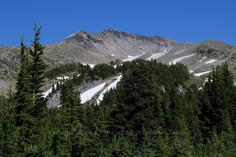 Barrett Spur [Timberline Trail, Mt. Hood Wilderness, Oregon]