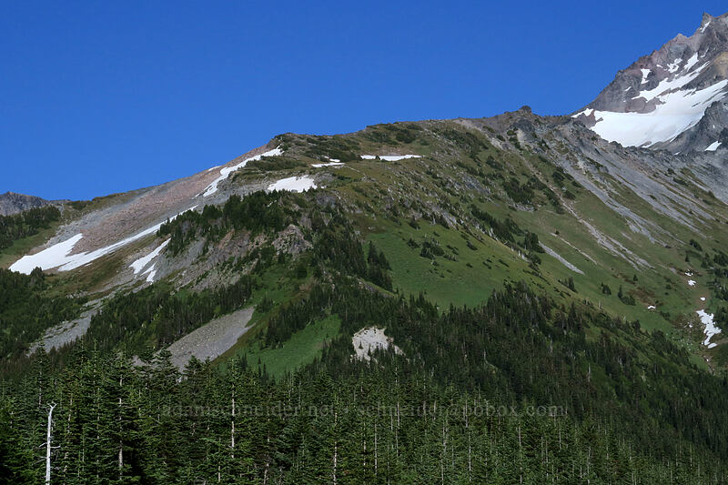 McNeil Point [Bald Mountain, Mt. Hood Wilderness, Oregon]
