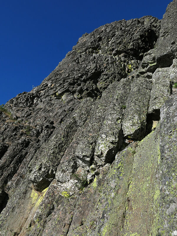 columnar basalt [Pilot Rock, Soda Mountain Wilderness, Oregon]
