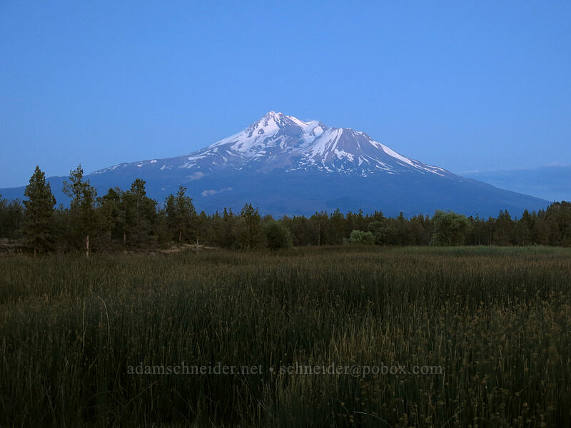 Mt. Shasta after sunset [99-97 Cutoff Road, Siskiyou County, California]