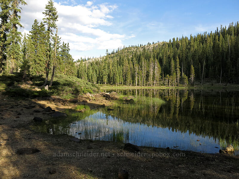 Upper Gumboot Lake [Upper Gumboot Lake, Shasta-Trinity National Forest, California]
