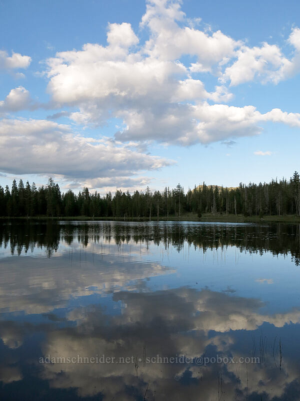 reflected clouds [Gumboot Lake, Shasta-Trinity National Forest, California]