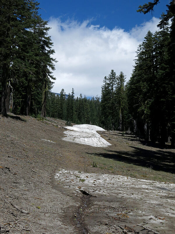 snow patches [Clear Creek Trail, Mount Shasta Wilderness, California]