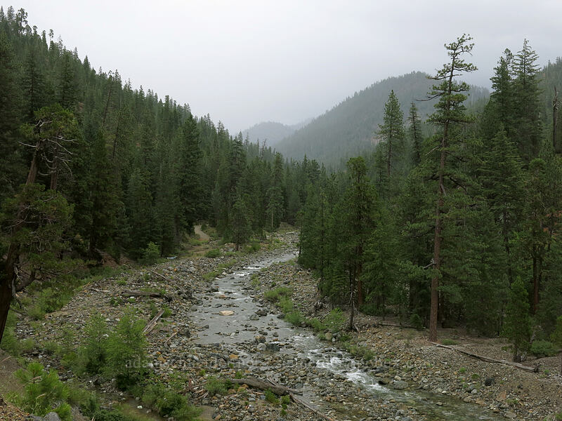 Trinity River [Forest Road 17, Shasta-Trinity National Forest, California]