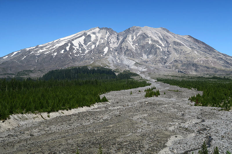 Mt. St. Helens & a lahar deposit [Ape Canyon Trail, Mt. St. Helens National Volcanic Monument, Washington]