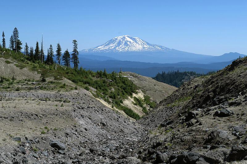 Ape Canyon & Mt. Adams [Ape Canyon Trail, Mt. St. Helens National Volcanic Monument, Washington]