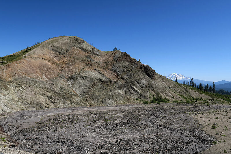 Pumice Butte & Mt. Adams [Ape Canyon Trail, Mt. St. Helens National Volcanic Monument, Washington]