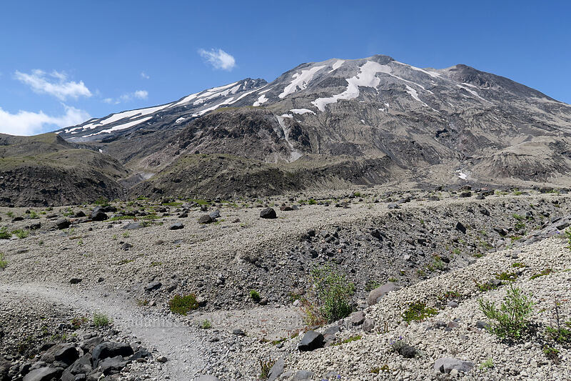 Mt. St. Helens [Ape Canyon Trail, Mt. St. Helens National Volcanic Monument, Washington]