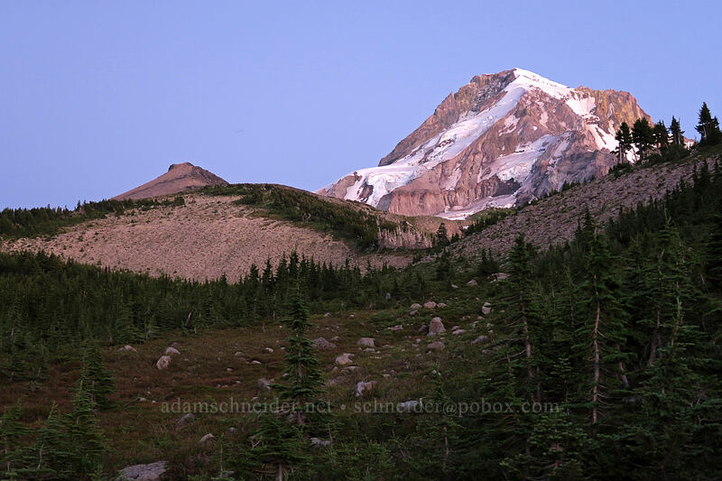 Barrett Spur & Mt. Hood after sunset [Vista Ridge Trail, Mt. Hood Wilderness, Oregon]