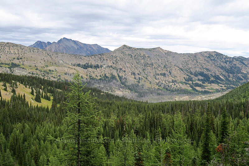 Robinson Mountain & Rattlesnake Creek Valley [Pacific Crest Trail, Okanogan-Wenatchee National Forest, Washington]