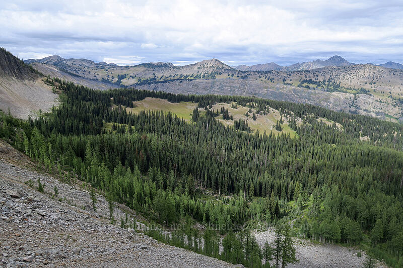 view to the north-northeast [Pacific Crest Trail, Okanogan-Wenatchee National Forest, Washington]