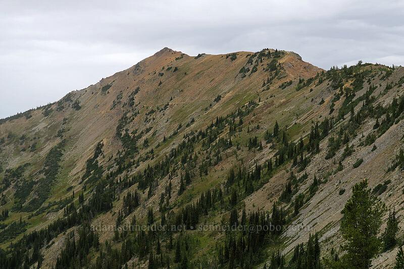 Tatie Peak [Pacific Crest Trail, Okanogan-Wenatchee National Forest, Washington]