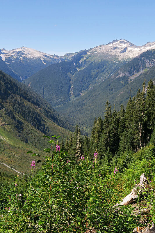 Hidden Lake Peaks, The Triad, & the upper Cascade Valley [Cascade Pass Trail, North Cascades National Park, Washington]