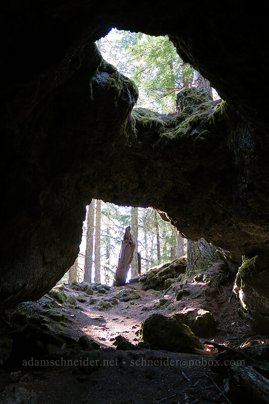 lava cave entrance [Sawyer's Caves, Willamette National Forest, Oregon]