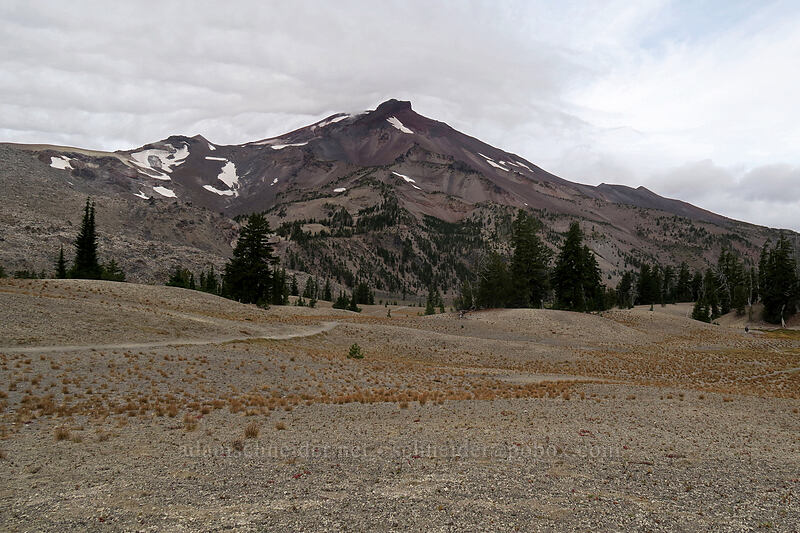 South Sister & pumice plains [Green Lakes Trail, Three Sisters Wilderness, Oregon]