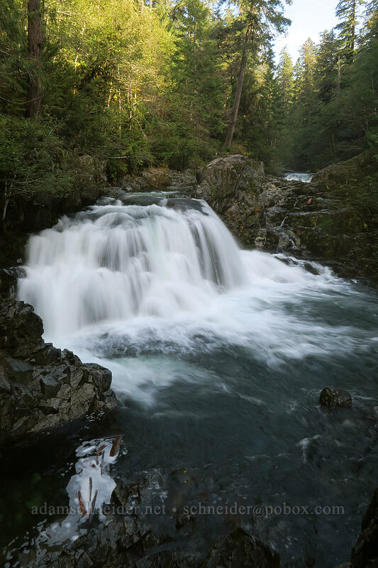 Sawmill Falls [Forest Road 2209, Opal Creek Scenic Recreation Area, Oregon]
