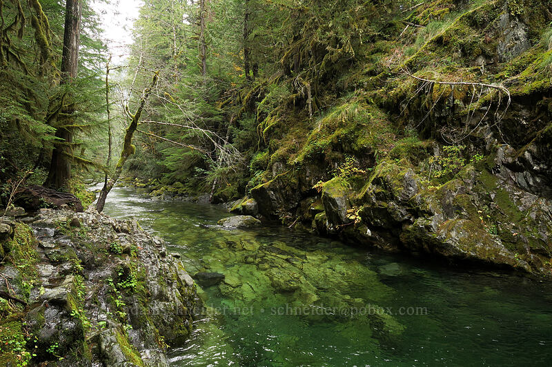 Opal Creek & Opal Pool [Kopetski Trail, Opal Creek Scenic Recreation Area, Oregon]