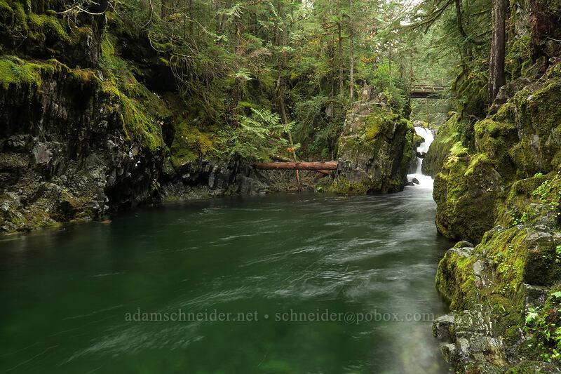 Opal Pool Falls & Opal Pool [Kopetski Trail, Opal Creek Scenic Recreation Area, Oregon]