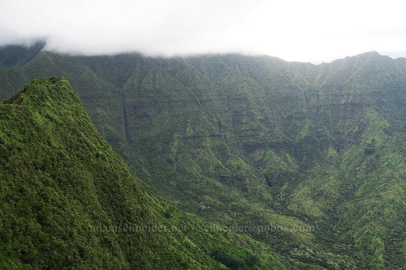 head of Wai'oli Valley [north summit of Hihimanu, Hanalei, Kaua'i, Hawaii]