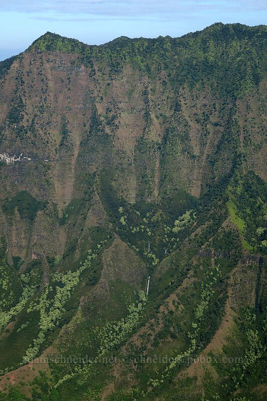 Kalalau Falls [Kalepa Ridge Trail, Na Pali Coast State Park, Kaua'i, Hawaii]