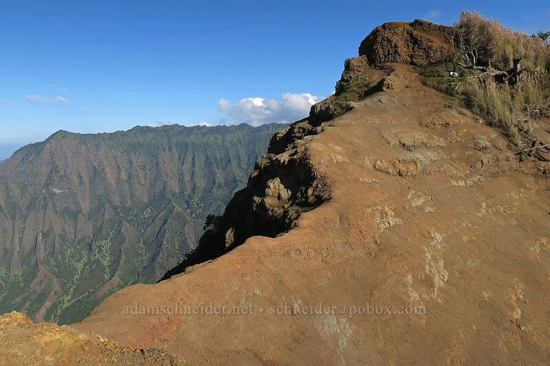 short but terrifying ridge [Kalepa Ridge Trail, Na Pali Coast State Park, Kaua'i, Hawaii]