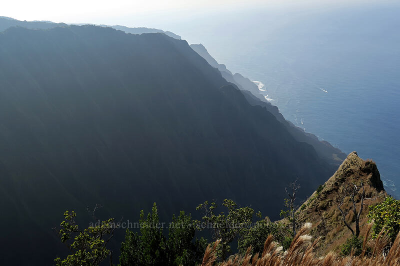 Honopu Valley & the western Na Pali Coast [Kalepa Ridge Trail, Na Pali Coast State Park, Kaua'i, Hawaii]