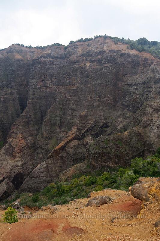 Pu'u Hinahina [Canyon Trail, Waimea Canyon State Park, Kaua'i, Hawaii]
