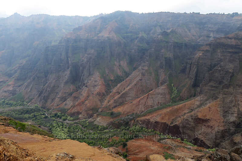 Waimea Canyon [Canyon Trail, Waimea Canyon State Park, Kaua'i, Hawaii]