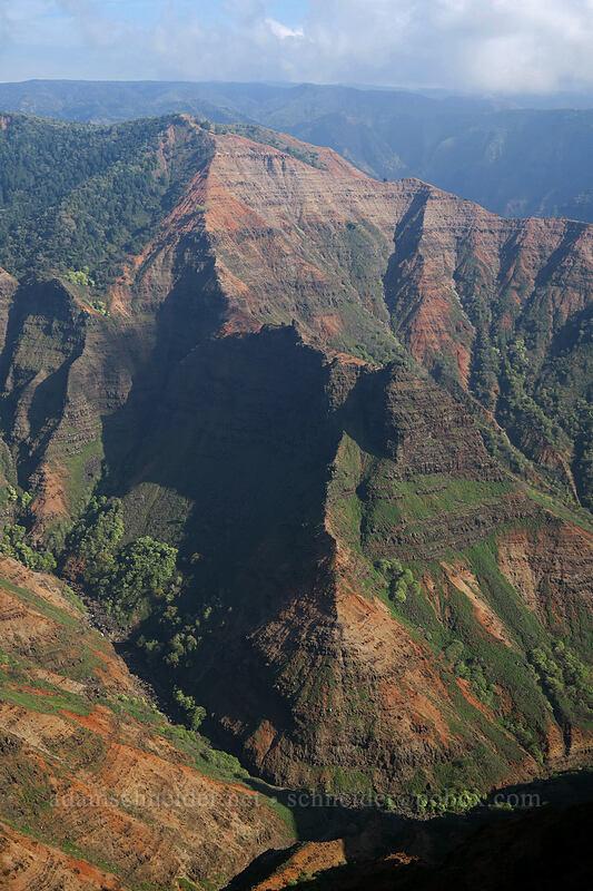 Po'omau Canyon [Canyon Trail, Waimea Canyon State Park, Kaua'i, Hawaii]