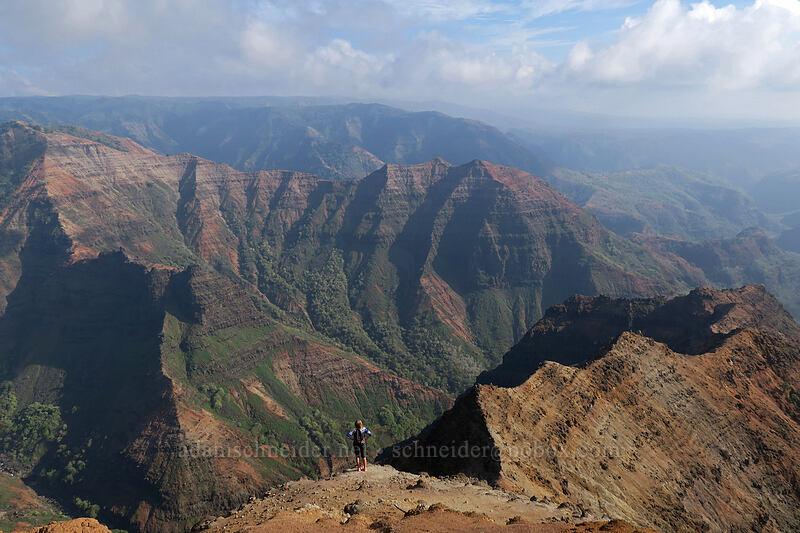 Po'omau Canyon & Waimea Canyon [Canyon Trail, Waimea Canyon State Park, Kaua'i, Hawaii]