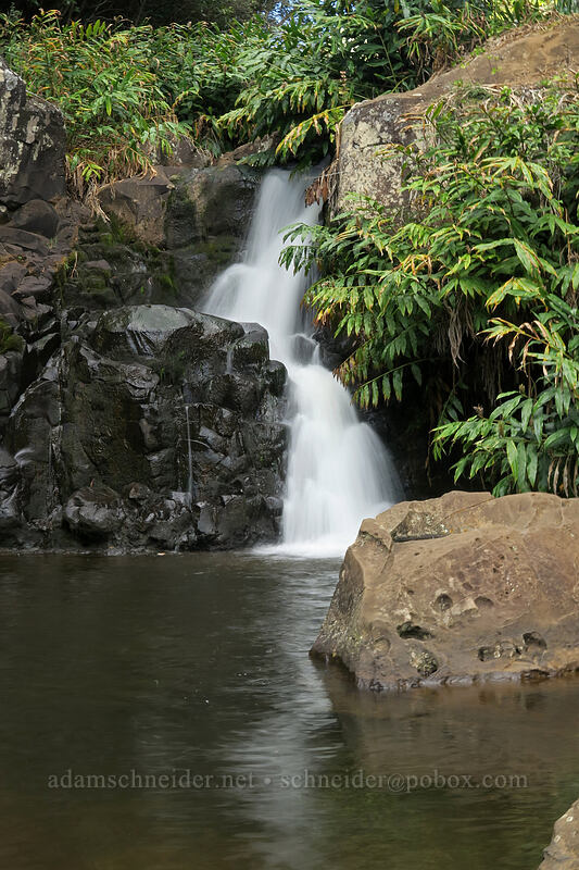 small waterfall above Waipo'o Falls [Canyon Trail, Waimea Canyon State Park, Kaua'i, Hawaii]