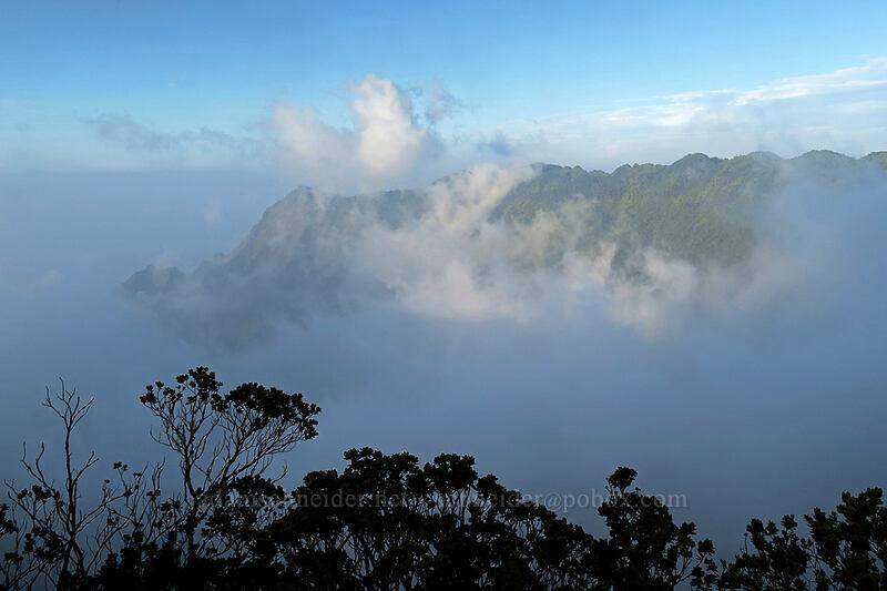 clouds in Kalalau Valley [Pihea Trail, Koke'e State Park, Kaua'i, Hawaii]
