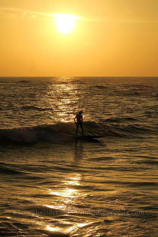 sunset surfer [Po'ipu Beach Park, Po'ipu, Kaua'i, Hawaii]