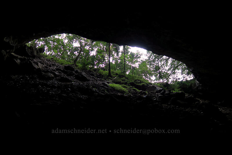 cave entrance, from inside [Waikapala'e Cave, Ha'ena State Park, Kaua'i, Hawaii]