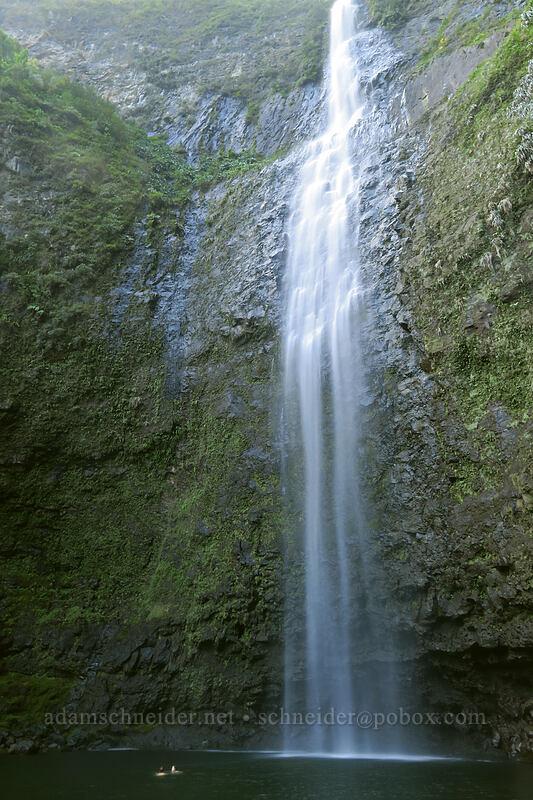 Hanakapi'ai Falls [Hanakapi'ai Falls Trail, Na Pali Coast State Park, Kaua'i, Hawaii]