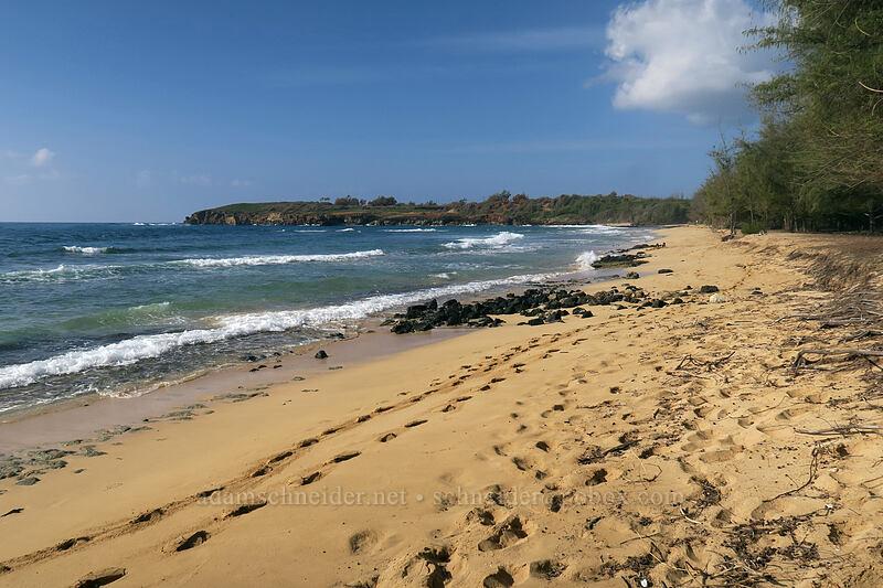 Gillin's Beach [Gillin's Beach, Maha'ulepu, Kaua'i, Hawaii]
